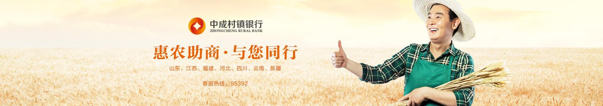 中成村镇银行